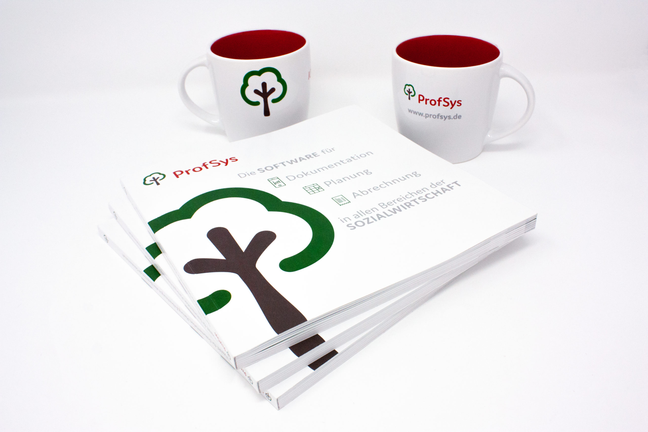 FORMLOS-ProfSys-Print-Broschüre-Corporate-Design-1