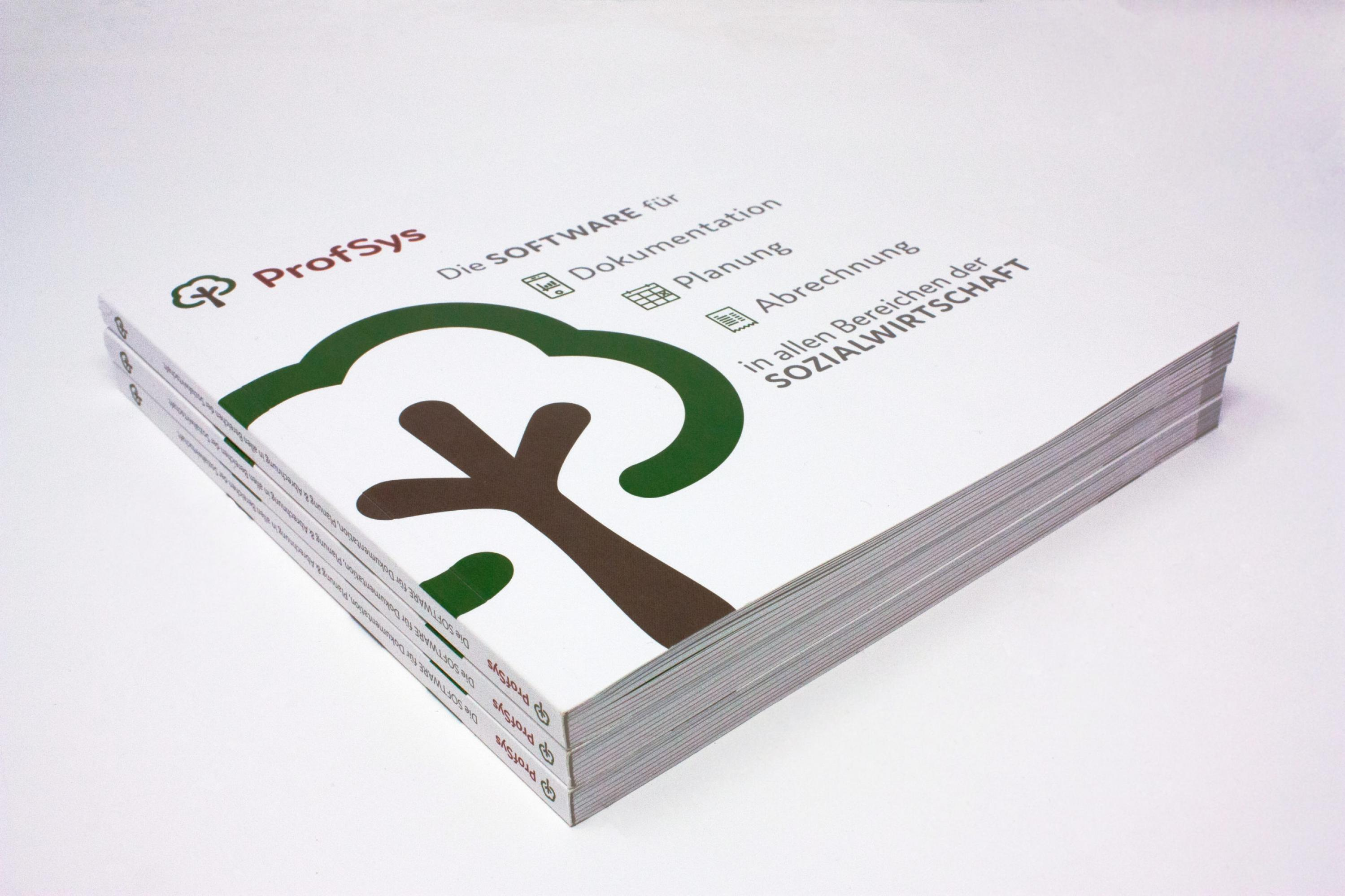 FORMLOS-ProfSys-Print-Broschüre-Corporate-Design-2