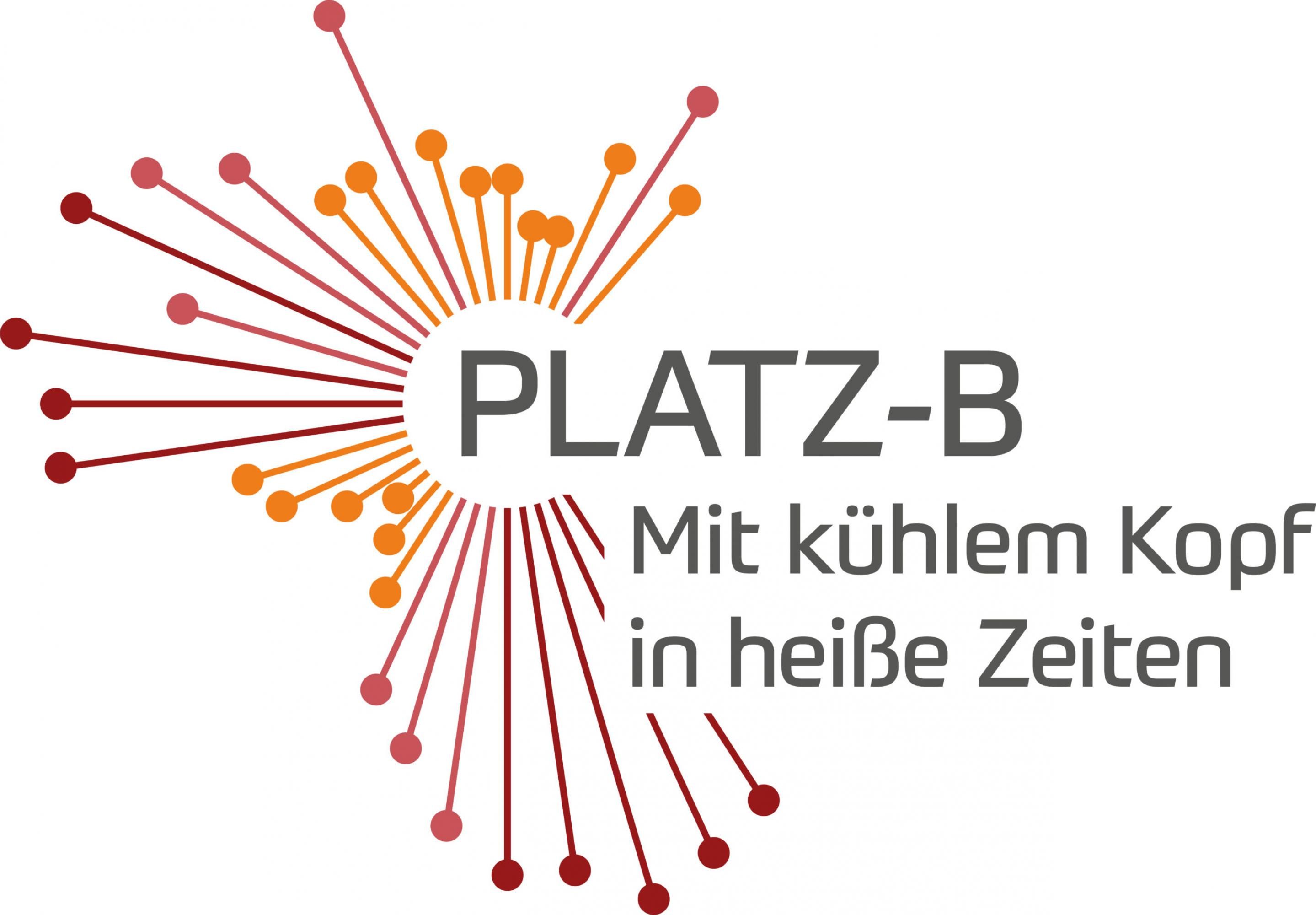 Platz-B-Logo-GoingVis-Branding-Corporate-Design